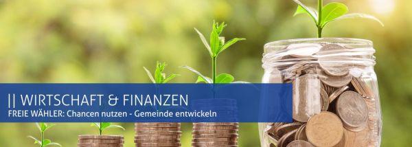 Freie Wähler: Wirtschaft und Finanzen